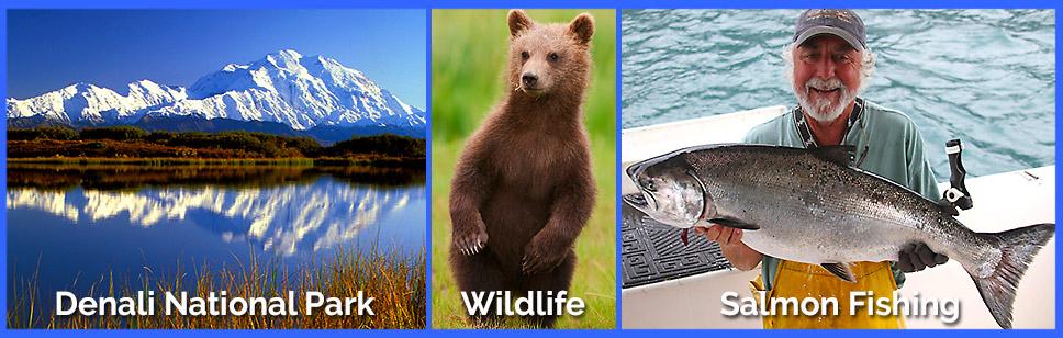 Alaska-Activities-2
